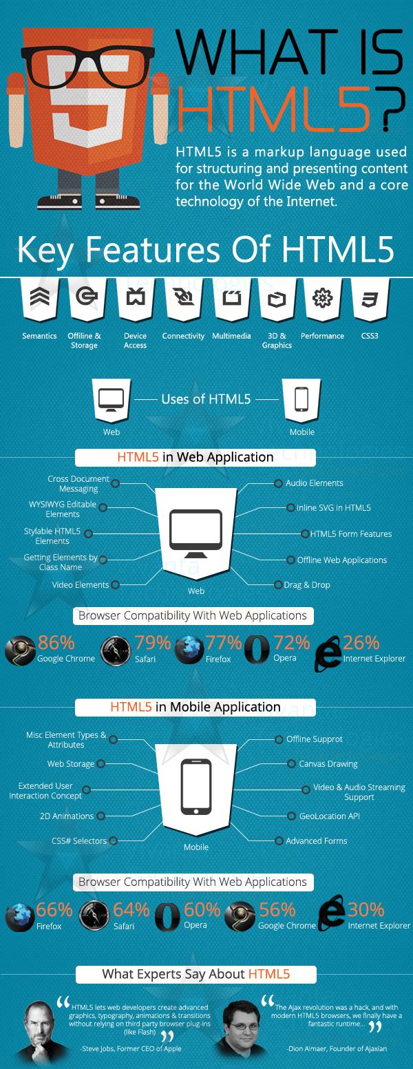 HTML5 A bird's eye view